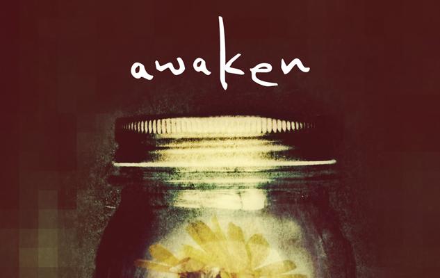 Katie pdf awaken kacvinsky